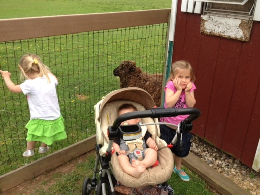 Besides the rebellious little girl on the fence and the fact that you can't see my son's face in this picture, we had a great trip to the farm!